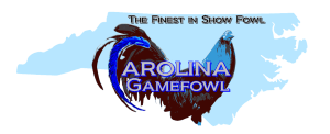 Carolina Gamefowl
